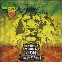 2ème album du Positiv' Youth Lion, 'Indomptable', en mars 2010
