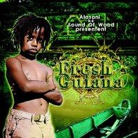 Sortie prochaine de la compilation 'Fresh Guiana'