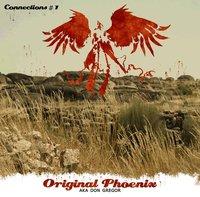 Original Phoenix propose sa Net-tape 'Connections #1'
